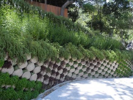 Hill Garden Hillside Landscaping